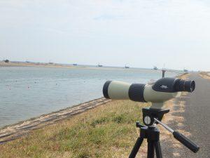 2月水辺の教室 渡り鳥を見に行こう!