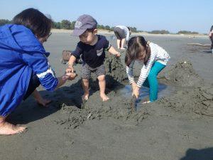 11月 はんもっく(木曜日) 小松海岸で遊ぼう