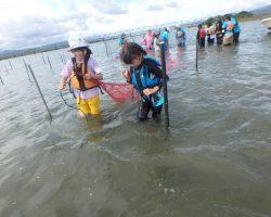 10月水辺の教室「すじ青のりってなぁに?~青のり漁を体験しよう~」