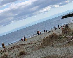 11月 はんもっく(モクニ) 小松海岸