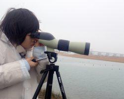 2月水辺の教室「どうして干潟には渡り鳥がくるの?」
