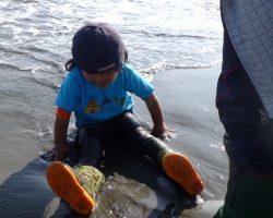 11月 はんもっく(スイヨウ) 海で宝物を探そう